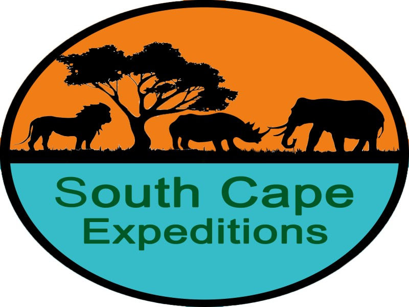 South Cape Expeditions, George